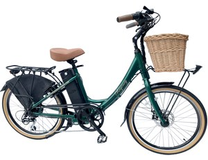 FreeGo Electric Bikes Green Regency300px