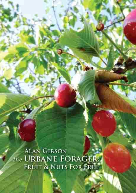 foraging book jacket 460