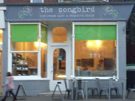 songbird external