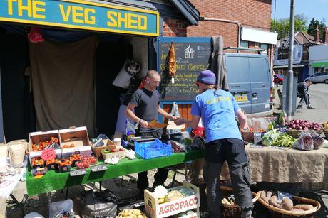 veg shed robin serves